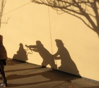 Winter Shadow Play 1