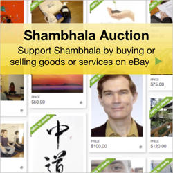 Shambhala Auction