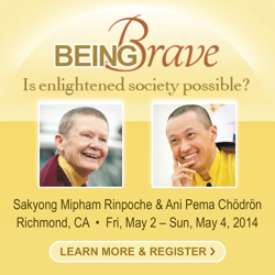 Being_Brave:_Is_Enlightened_Society_Possible?