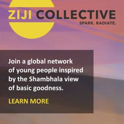 Ziji Collective