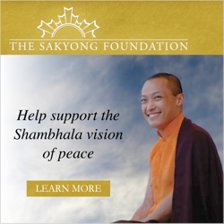 The Sakyong Foundation